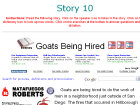 Goats Being Hired